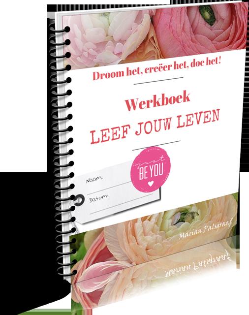 Werkboek Leef jouw Leven